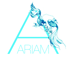 Ariam Business Consulting